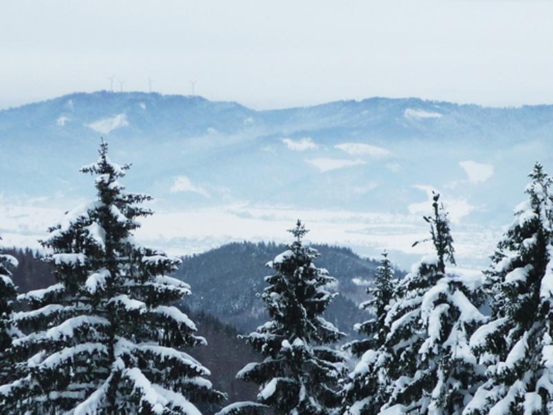 Eine atemberaubende Aussicht auf die Schneedecke und das Dreisamtal.