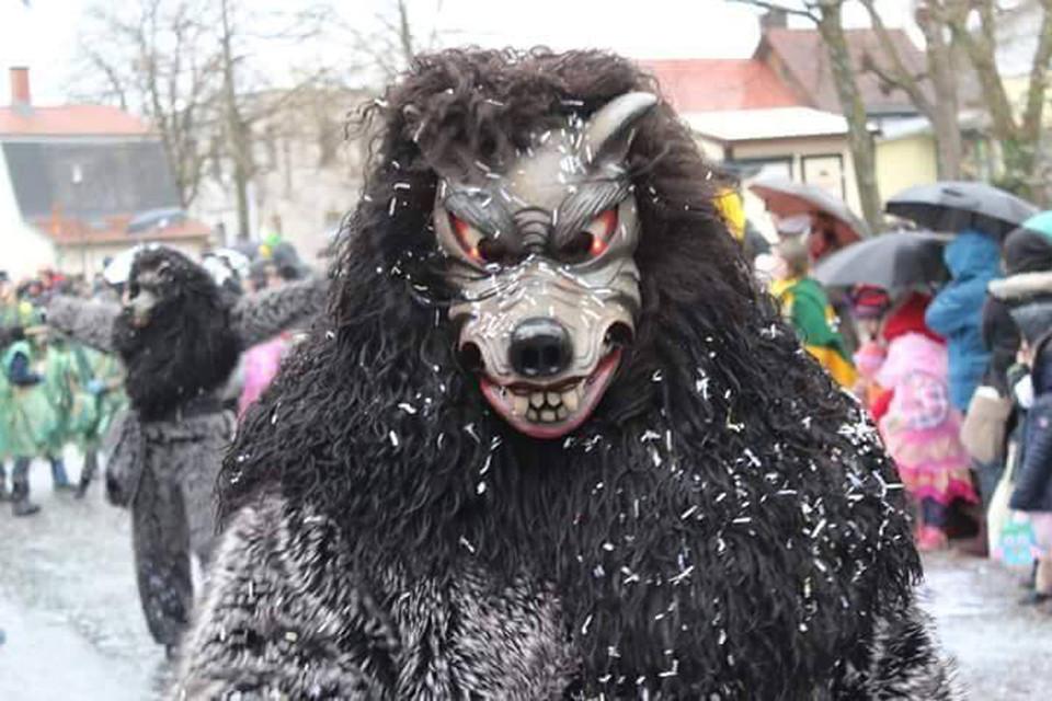 Dunkles Fell, gefletschte Zähne und böser Blick: Ein Geisterwolf!
