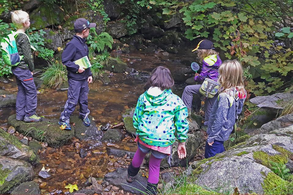 In dem kleinen Fluss sind die Kinder aber nicht sehr erfolgreich.