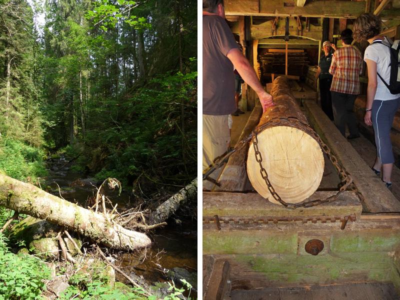 Wir sind begeistert, was der Förderverein Heimatpfad Hochschwarzwald alles restauriert und neu aufgebaut hat.