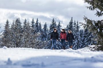 Entschleunigt im Winterwald