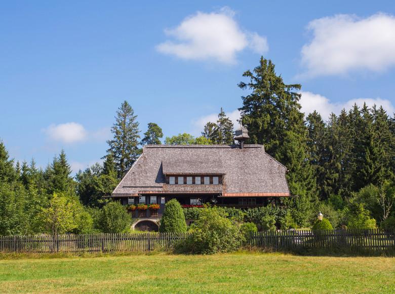 Bekannt und populär wurde das Hüsli durch die TV-Serie Die Schwarzwaldklinik, in der es den Wohnsitz von Prof. Brinkmanns darstellt.