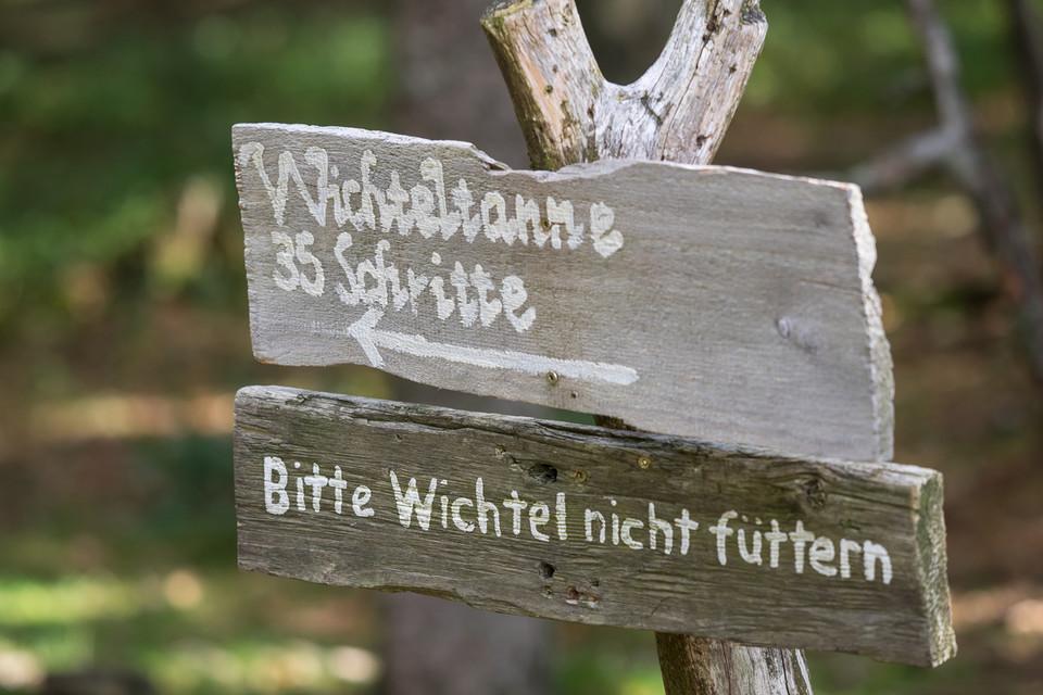 Der Wichtelpfad im Auerhahnwald am Feldberg.