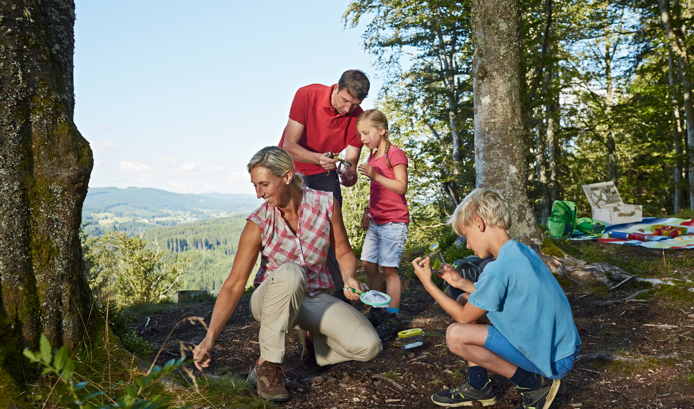 Familie erkundet gemeinsam den Natur