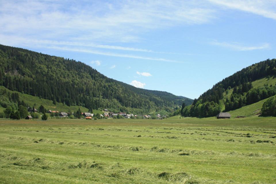 Wir lasen Menzenschwand hinter uns und starten Richtung Herzogenhorn.