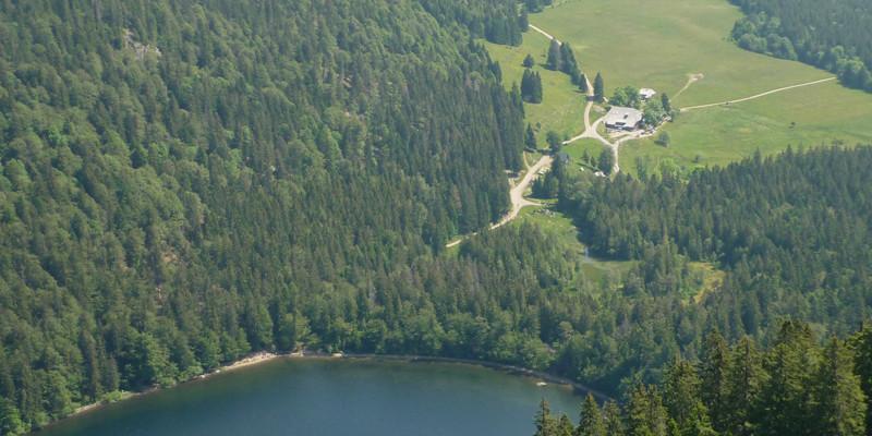 Unser Ziel ist es, am Höchsten, auf dem Feldberg-Steig zu wandern.