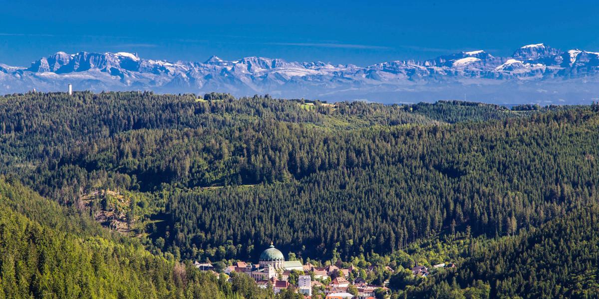 Stadtpark | Blick auf St. Blasien und die Alpen
