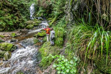 Die 7 schönsten Wasserfälle des Hochschwarzwalds