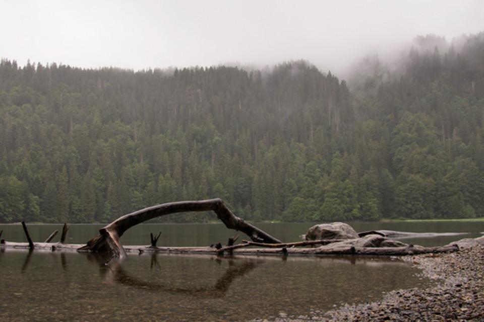 Einsam und verlassen liegt er da der Feldsee, bis wir kommen.