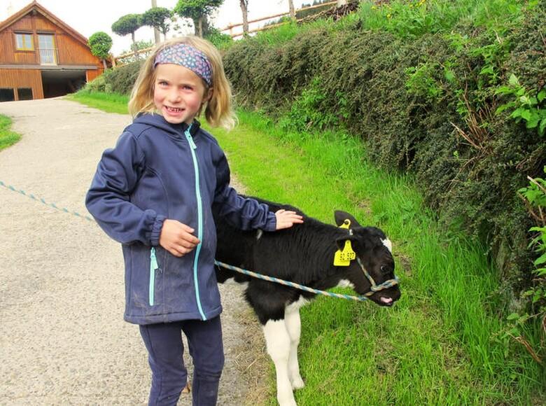 """""""Die Kinder können mitwerkeln, wie sie wollen und lernen viel. Für manche aus der Stadt sind Kühe ja lila."""""""