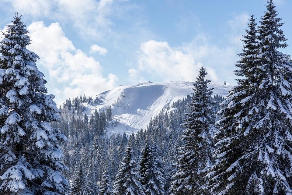 Für manche ist das Herzogenhorn der schönste Gipfel im gesamten Schwarzwald.