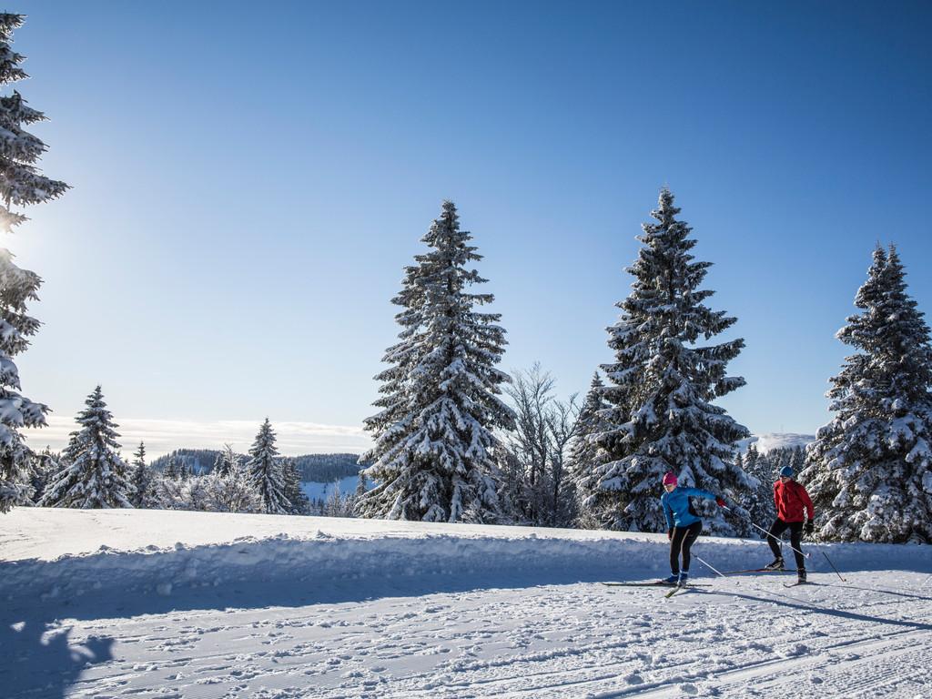 So verbrennt man auch im Winter Kalorien.  Die Turnschuhe werden gegen Langlaufskier ausgetauscht und los geht's!
