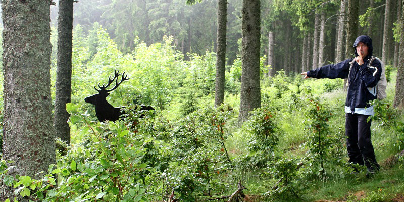 Etwas verregnet aber es hat sic gelohnt, unser Abstecher in den Hochschwarzwald.