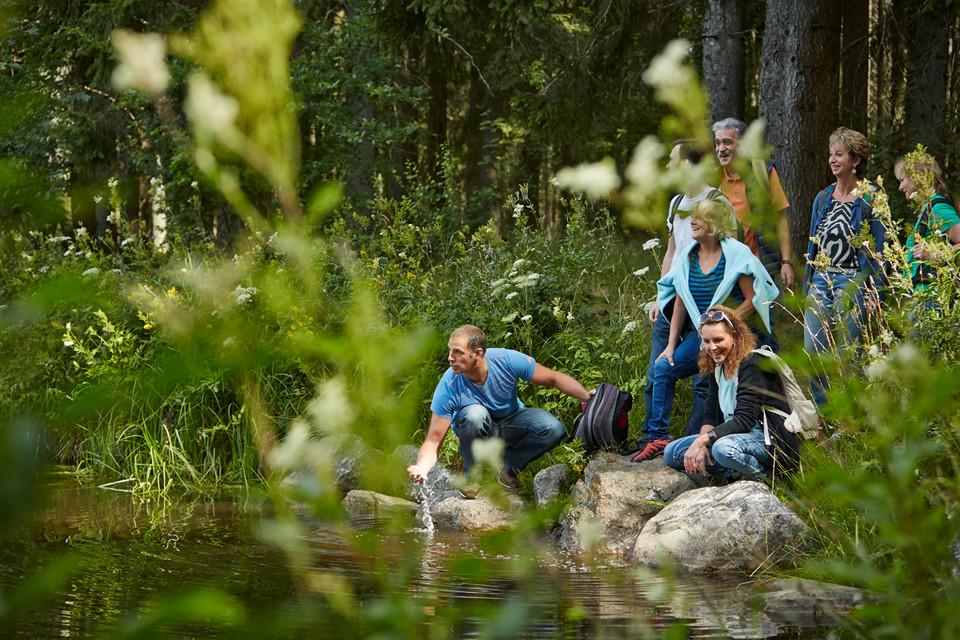 Fotostory Waldfest 2