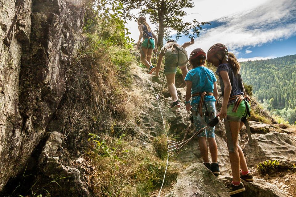 Der Aufstieg beginnt mit einem harmlosen, schmalen Wanderweg über Steine und Wurzeln durch lichten Laubwald.