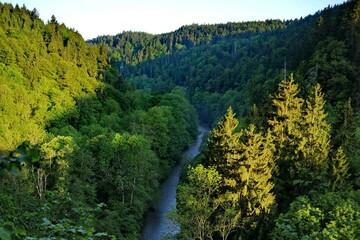 Die schönsten Schluchten im Schwarzwald