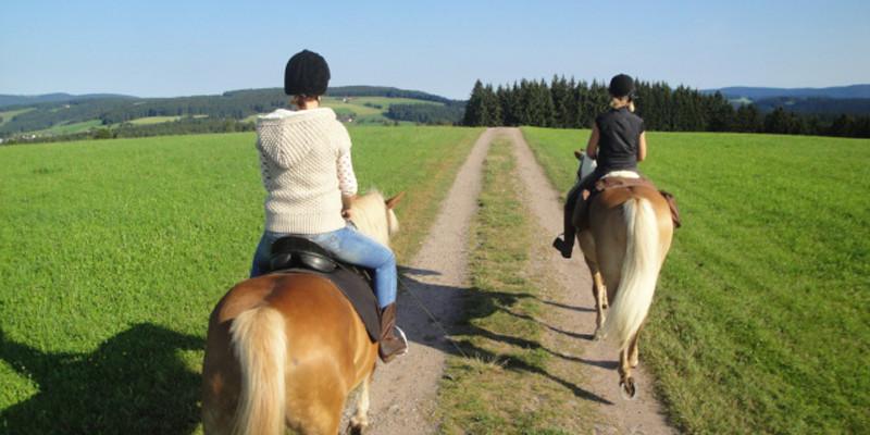 Ganz nach dem Motto: Das Glück der Erde liegt auf dem Rücken der Pferde.