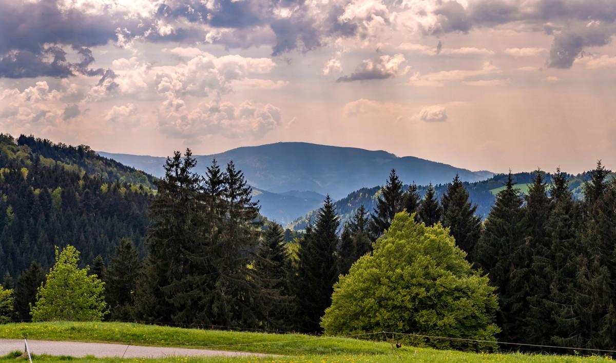 Die 8 schönsten Berge im Schwarzwald