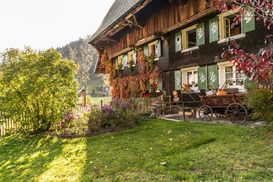 Schwarzwaldhof in Menzenschwand