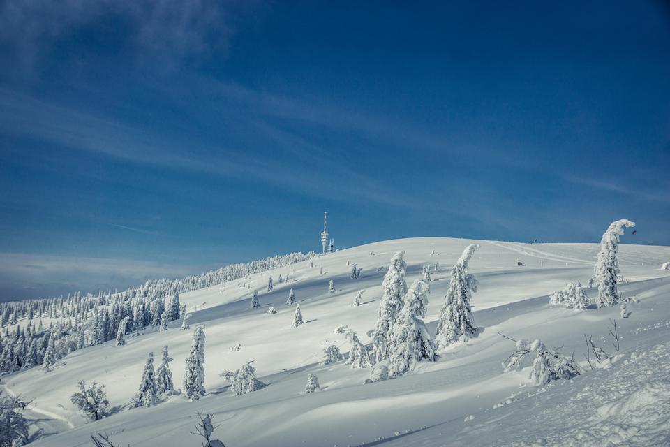 Winterlandschaft am Feldberg.png