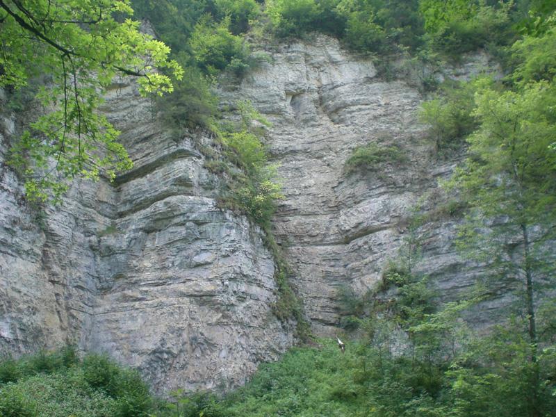 Schon sind wir mitten in der Schlucht, neben uns riesige Felsen und grüne Bäume.