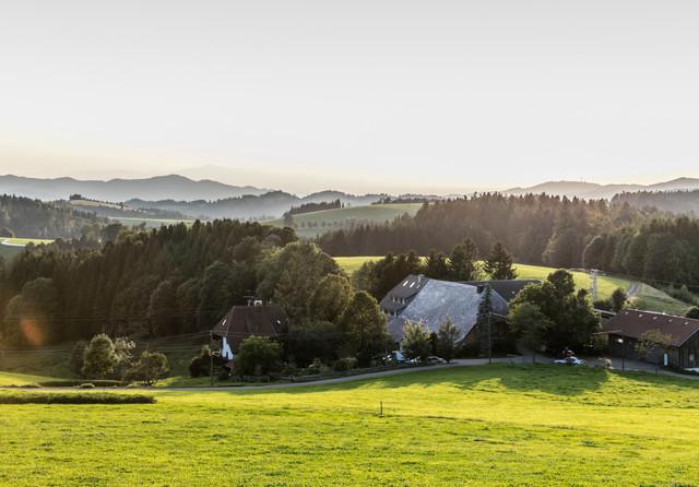 Der Brosihof in St. Märgen inmitten einer traumhaften grünen Landschaft